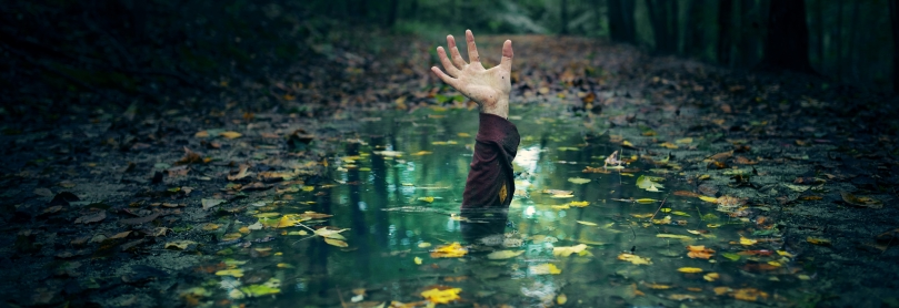 A hand reaching out of a puddle in the forest.